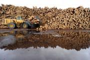 Как организовано производство из отходов древесины?