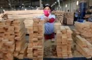 Ожидается увеличение экспорта лесоматериалов  из Малайзии в Японию
