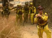 В два раза увеличилось число лесных пожаров на западе США из-за изменений климата