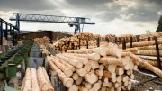 Rock Wood Products расширяет свои лесопилки