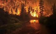 В Белгородском регионе начался пожароопасный сезон