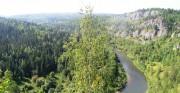 Беларусь сотрудничает с Украиной в подготовке кадров для лесной отрасли